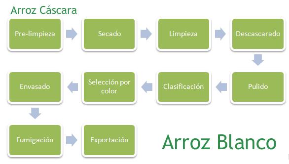 proceso-1