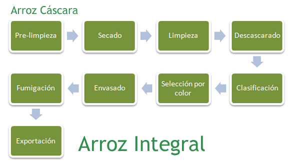 proceso-2